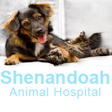 Shenandoah Animal Hospital